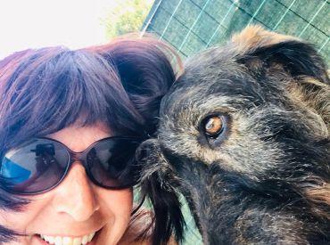 Quando la relazione col cane non funziona – Parte 2